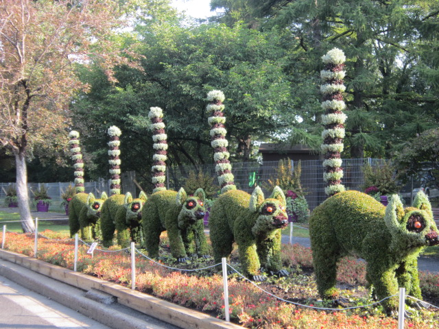 im going to start with one of the most recentthe montreal botanical gardens and the mosaicultures exhibit this is an international competition started - Montreal Botanical Garden